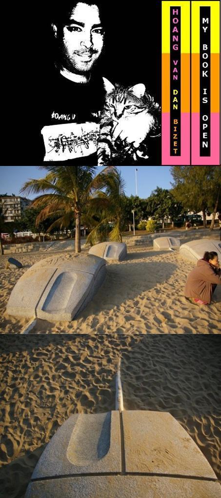 des-souris-sur-la-plage